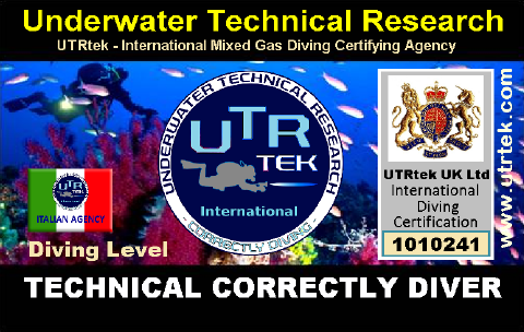 Technical Correctly Diver